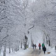 Alarmstufe Rot - Warnung vor Eisregen! (Foto)