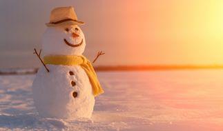 Erwartet uns ein eisiger Januar? (Foto)