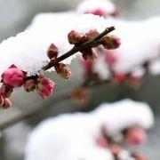 Vorsicht, Glatteis! HIER schlägt der Winter richtig zu (Foto)