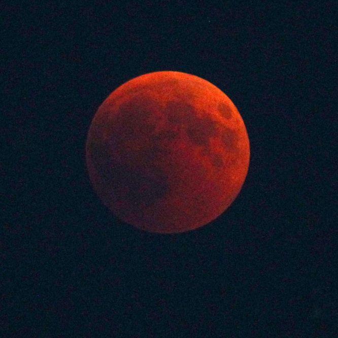 Düstere Prophezeiung! Blutmond kündigt Weltuntergang an (Foto)