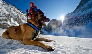Der Schnee hat den Alpenraum weiter fest im Griff. (Foto)