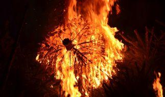 Ein brennender Christbaum hat in Mönchweiler eine Doppelhaushälfte in Brand gesetzt. (Foto)