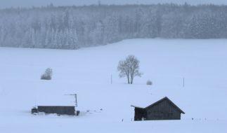 erschneit ist die Landschaft bei Friesenried. Der Winter hat weite Teile Bayerns weiter fest im Griff. (Foto)