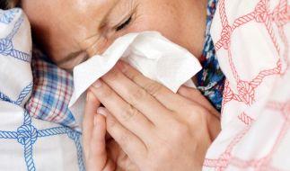 Grippe-Alarm in Deutschland! (Foto)