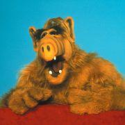 Tommi Piper lieh für die deutsche Fassung der Kultfigur Alf seine Stimme.