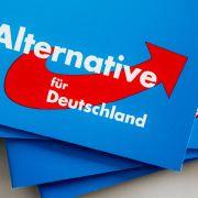 AfD wird Fall für den Verfassungsschutz (Foto)