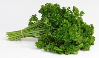 Petersilie mag als Küchenkraut delikat sein - doch bei der medizinischen Verwendung ist Vorsicht geboten (Symbolbild). (Foto)