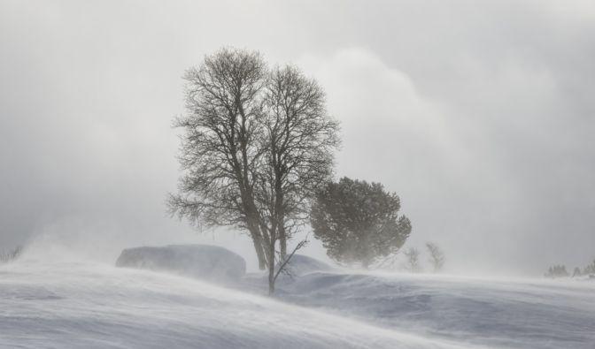 Kälteeinbruch in Deutschland 2019
