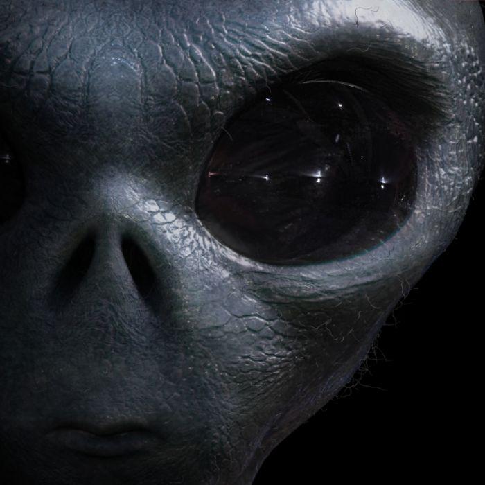 Alien mit Eierkopf? DIESES Skelett gibt Rätsel auf (Foto)