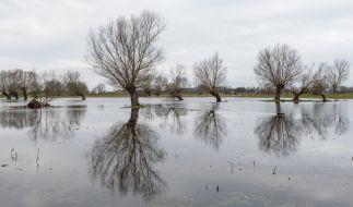 Drohen im Februar 2019 Überschwemmungen? (Foto)
