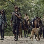 Daryl, Michonne und Co. bringen den toten Jesus zurück.