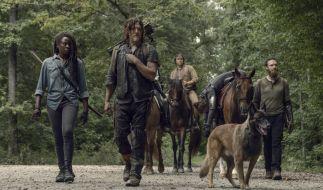 Daryl, Michonne und Co. bringen den toten Jesus zurück. (Foto)