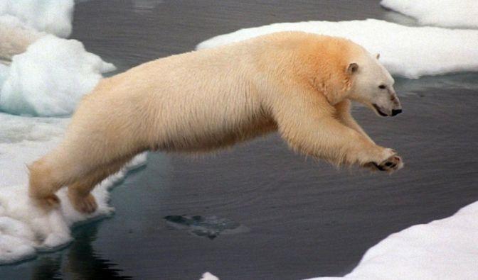 Am Nordpolarmeer in Sibirien