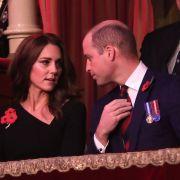 Wie schlecht verstehen sich Kate Middleton und Prinz William mit Meghan Markle und Prinz Harry?