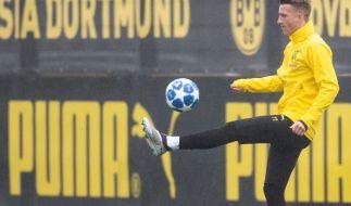 Marco Reus kehrt nach dreiwöchiger Zwangspause zurück ins BVB-Training. (Foto)