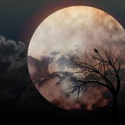 Düsterer Krähenmond erhellt Deutschlands Nachthimmel (Foto)