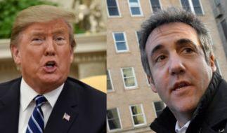 Michael Cohen, ehemaliger Anwalt von US-Präsident Trump, wird am Mittwoch vor dem US-Kongress aussagen. (Foto)