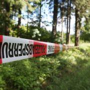 Ausgebüxte Geschwister nach tagelanger Suche im Wald entdeckt (Foto)