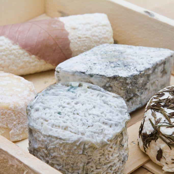 Gesundheitsgefahr! Käserei ruft DIESEN Käse zurück (Foto)
