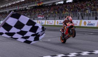 Alle Ergebnisse von MotoGP, Moto2 und Moto3 2019 in Valencia. (Foto)