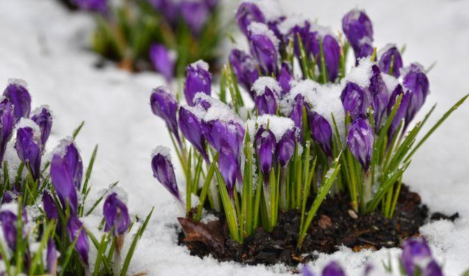 Wetter im März 2019