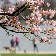 Das Wetter zum kalendarischen Frühlingsbeginn (Foto)