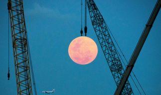 Im April erwartet uns ein pinkfarbener Vollmond. (Foto)
