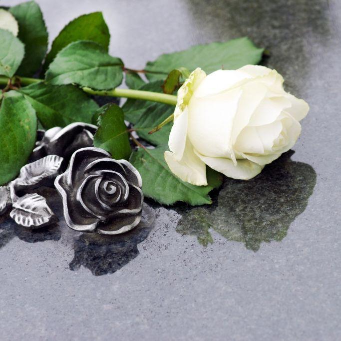 Ganze Band ausgelöscht! Musiker sterben bei Autounfall (Foto)