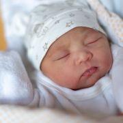 Schimmelpilz-Alarm! dm ruft Baby-Nahrung zurück (Foto)