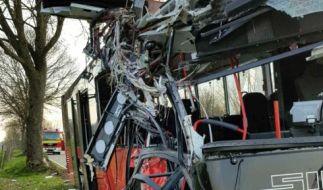 Der Linienbus wurde bei dem Aufprall völlig zerstört. (Foto)