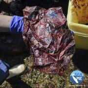 Dieses Foto zeigt Plastik, das aus dem Bauch des toten Wals stammt.