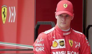 Mick Schumacher wurde von Cesare Fiorio harsch kritisiert. (Foto)