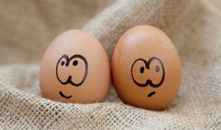 Wie ungesund sind Eier tatsächlich? (Foto)