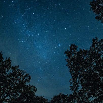 DIESE Sternschnuppen verzaubern uns jetzt den Nachthimmel (Foto)
