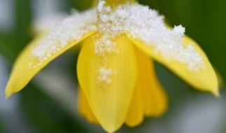 Kalte Kathi bringt den Winter nach Deutschland zurück. (Foto)