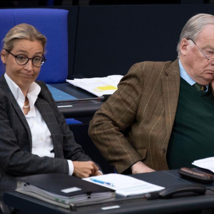 Illegale Spenden! AfD muss über 400.000 Euro Strafe zahlen (Foto)