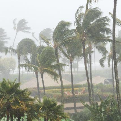Wetter-Chaos! Alarmstufe Violett!Jetstream bedroht Mittelmeerraum (Foto)