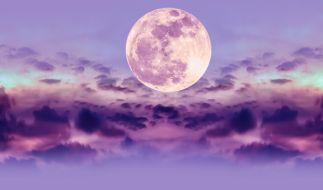 Im April können wir uns auf einen pinkfarbenen Mond freuen. (Foto)