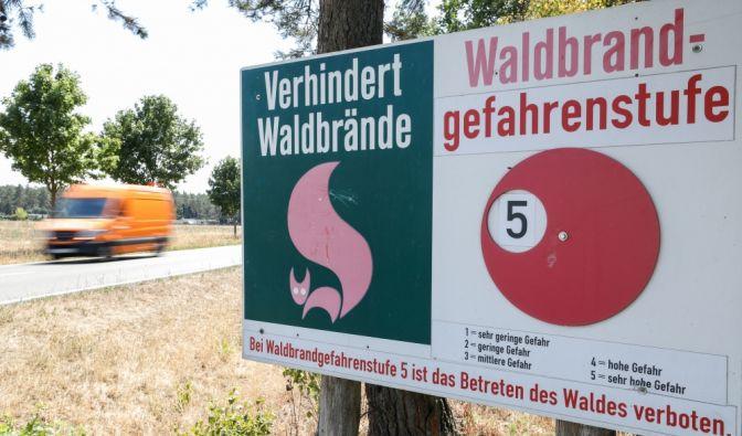 Waldbrand an Bleiloch-Talsperrein Thüringen