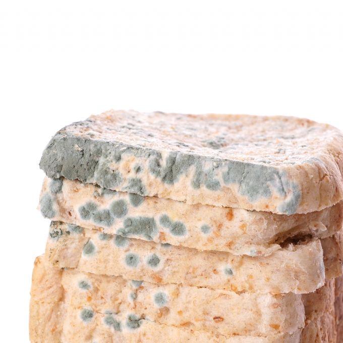 Gesundheitsgefahr! Netto ruft DIESES Sandwich zurück (Foto)