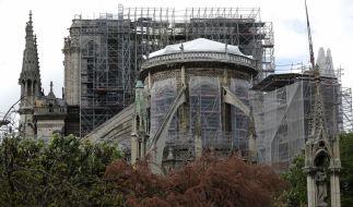 Notre-Dame soll neu aufgebaut werden. (Foto)