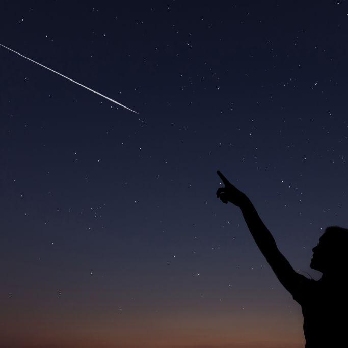 DIESE Sternschnuppen-Woche dürfen Sie nicht verpassen! (Foto)