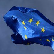 Die wichtigsten Fakten zur Wahl des EU-Parlaments (Foto)