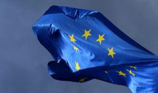 Ende Mai findet die Europawahl 2019 statt. (Foto)