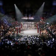 Zuschauer-Schock! Wrestling-Star (51) stirbt im Ring (Foto)