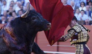 Ein Stierkämpfer schwingt ein Tuch in einer Stierkampfarena. (Foto)