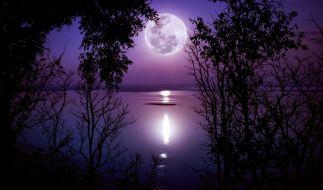 Im Mai erstrahlt der Vollmond als Flower Moon. (Foto)