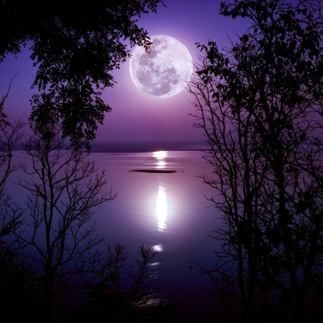 Magischer Blumenmond! Hat der Mai-Mond Zauberkräfte? (Foto)