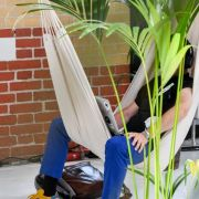 Jobsuche 2.0 - Großraumbüro oder ein Job unter Palmen? (Foto)