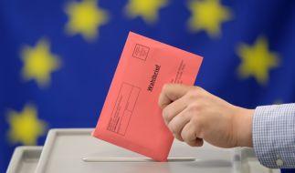 """Am 26.05.2019 ist Europawahl. Um ein Gefühl zu bekommen welche Partei mal wählen könnte, helfen Tools wie""""WahlSwiper"""" und """"You vote EU"""". (Foto)"""